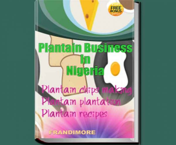 plantain chips business in Nigeria ebook