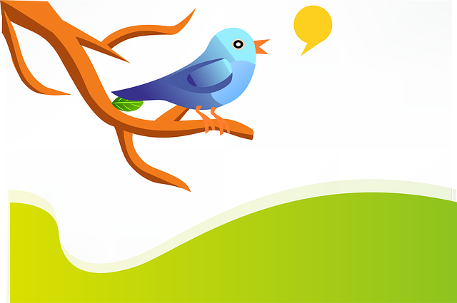 Guidelines On Using Twitter for Customer Service