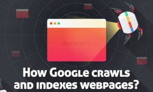 Google crawl pages