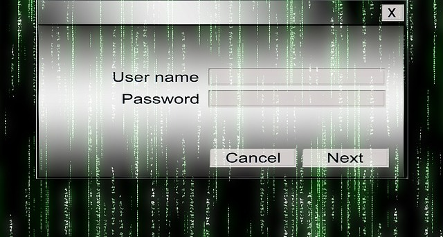 Upscale Website Security by Changing Your WordPress Log in Page URL
