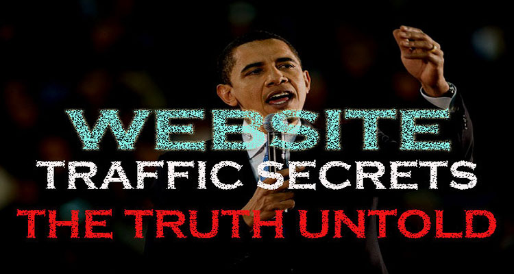 Website Traffic Secrets: What Pro Bloggers will Never Tell You [Infographic]